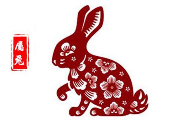 属兔人今日运势