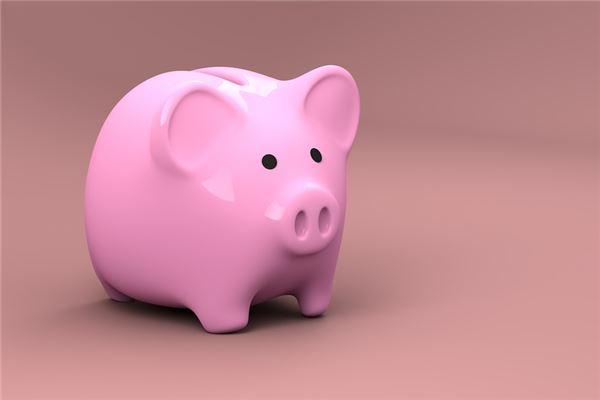 属猪的守护神是什么