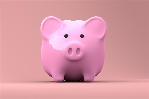 属猪2020年运势及运程每月运程