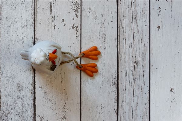 梦见好多死鸡