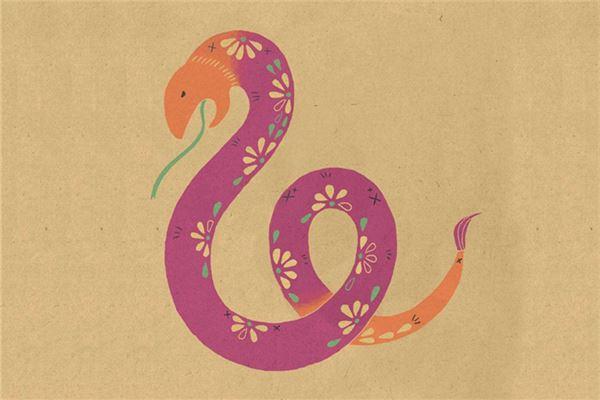 2013蛇年本命年_2013年是什么年_属蛇_卜易居