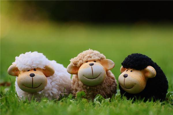 2019年属羊人的运势如何?